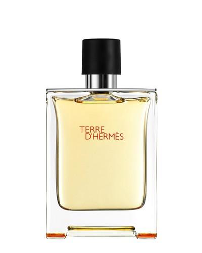 Hermes Terre D Hermes 100ml tester